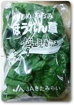寒締めちぢみほうれん草紹介-03