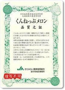 メロン紹介-08