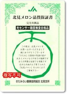メロン紹介-10