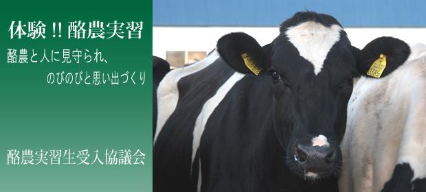 酪農実習生受入協議会