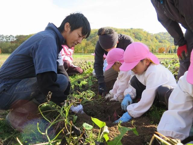 育食活動 収穫の様子