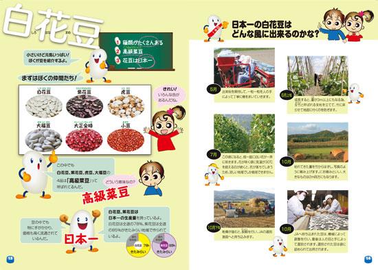 食育冊子 13・14ページ 白花豆