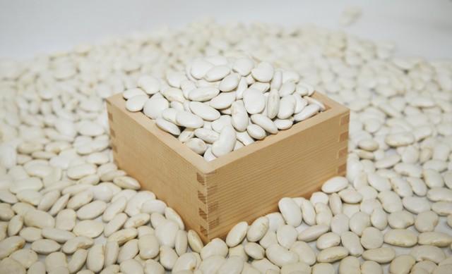 ピックアップ「白花豆」-05