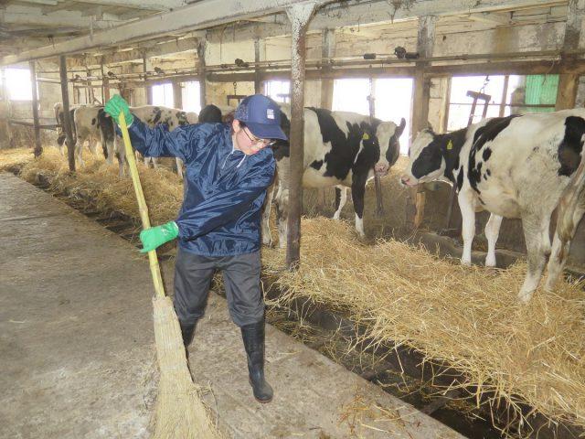 農家実習1