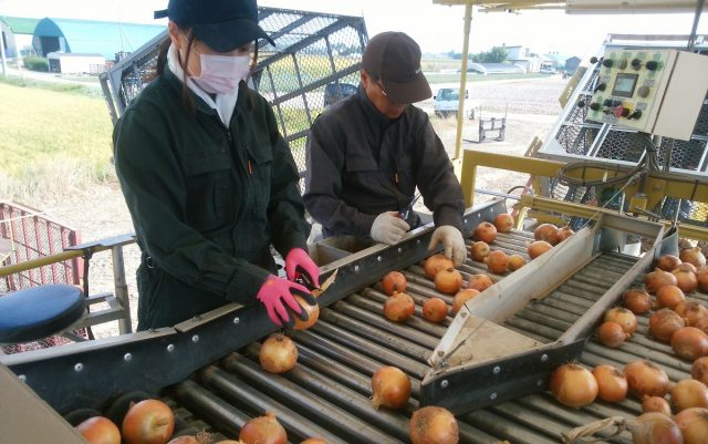 農家実習の様子1