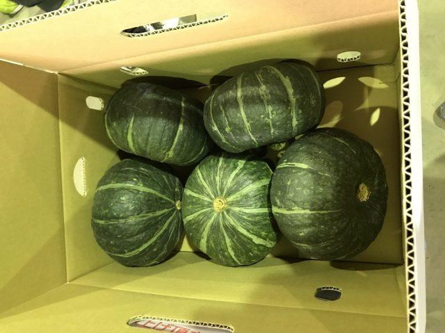 選果後のかぼちゃ