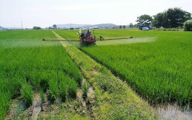 水稲の防除
