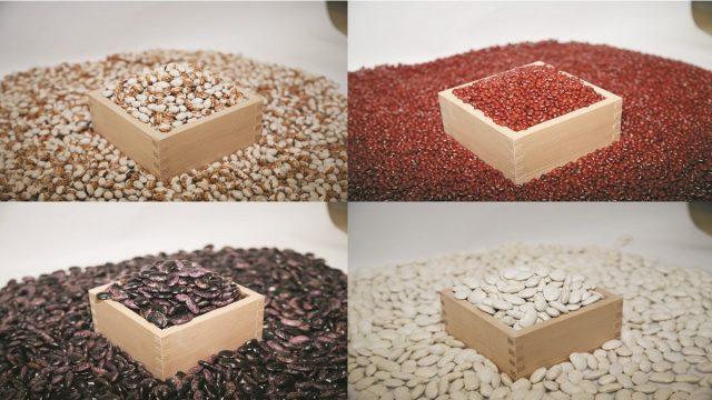 豆類イメージ1