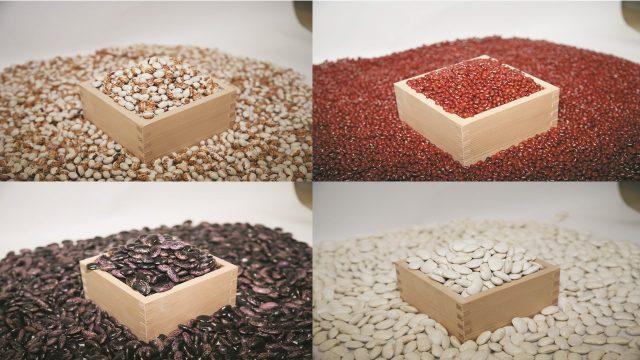 豆類イメージ