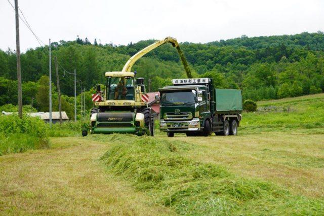 牧草収穫作業の様子1