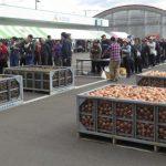 端野農業物産フェアの様子1
