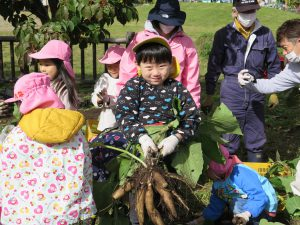 収穫体験の様子4