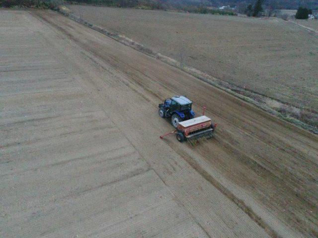 春まき小麦播種作業1