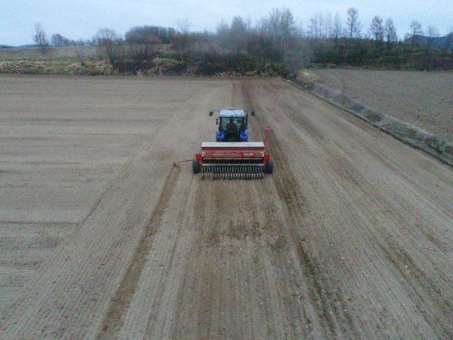 春まき小麦播種作業2